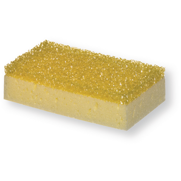Car Sponge with Insect Residue Scraper